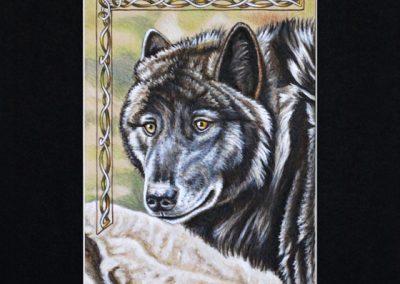 portrait de loup noir