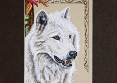 portrait de loup blanc
