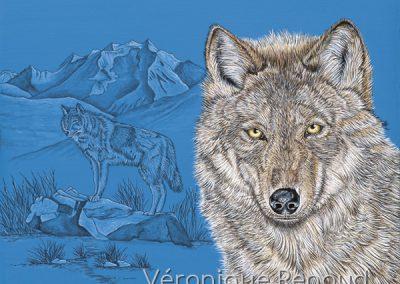 deux loups et chaîne de montagnes